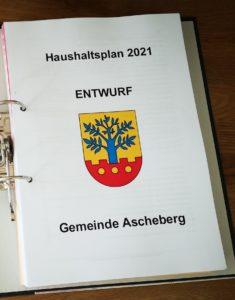 Haushaltsplan 2021